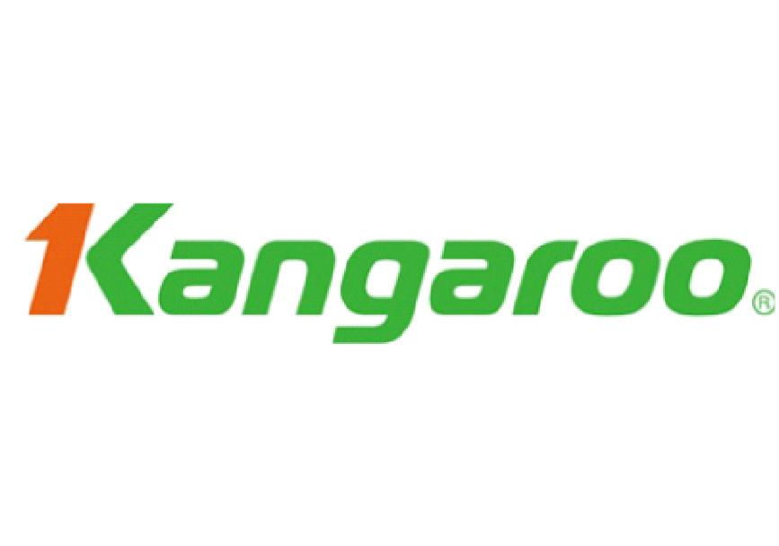 Phần mềm hóa đơn điện tử VNInvoice tại Kangaroo